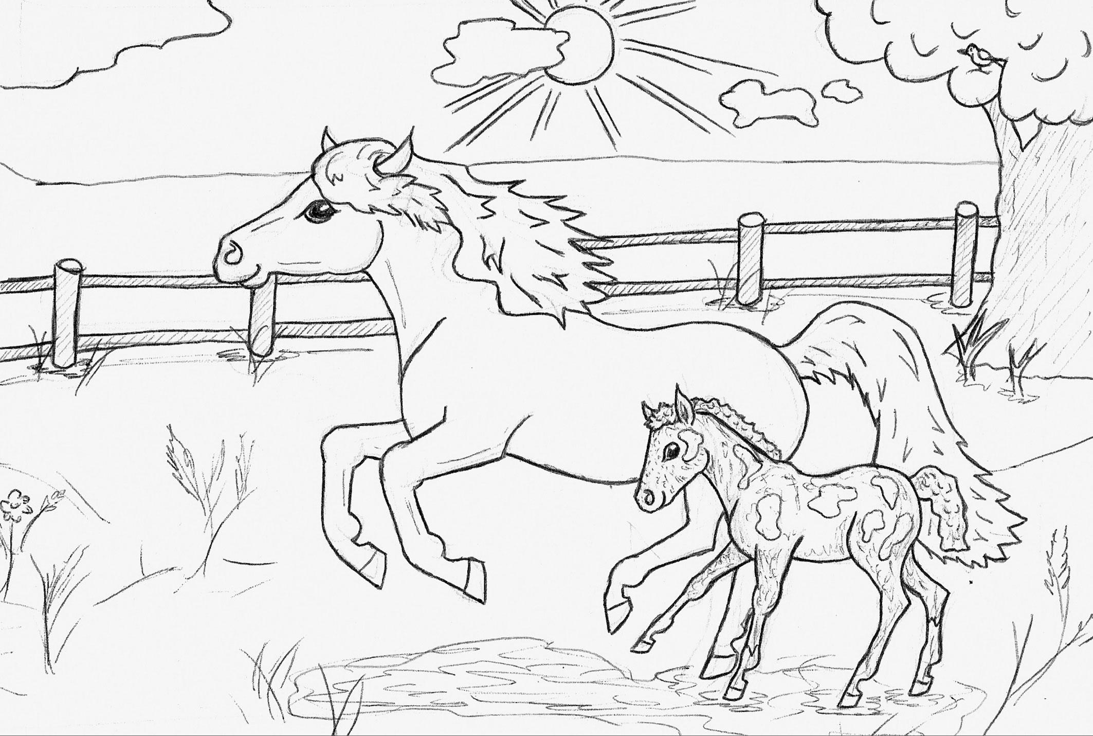 malbuch bauernhof2 pony