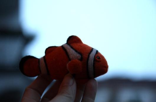 clownfisch1