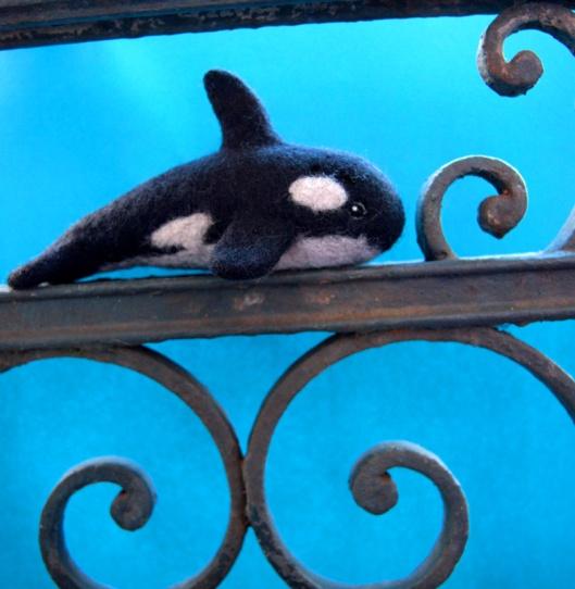 orca_blues