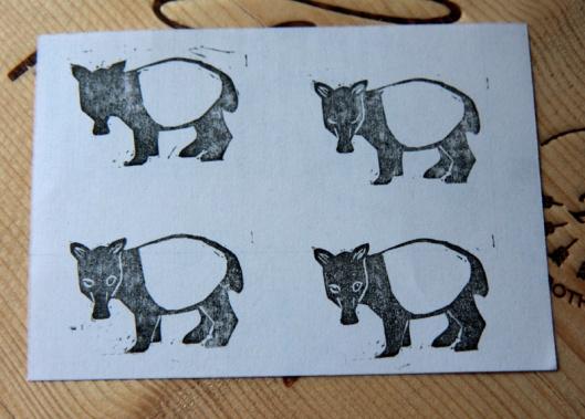 tapir-evolution