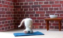 adventskalender_2020_04_yoga_kopfstand