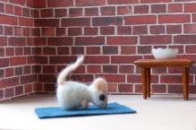adventskalender_2020_04_yoga_nasenstand
