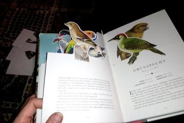 vogelbuch2